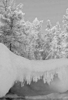 Awesome Winter snow scene