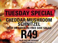 Mikes Kitchen Port Elizabeth - Tuesday Special Cheddar Mushroom Schnitzel Tuesday Specials, Port Elizabeth, Side Salad, Cheddar, Stuffed Mushrooms, Beef, Chicken, Kitchen, Food