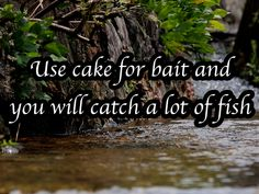 All the best fishing tips to make fishing fun and enjoyable for the whole Fly Fishing Tips, Best Fishing, Fishing Boats, Fly Casting, Fishing Supplies, Fishing Equipment, Salt And Water, Dating Advice