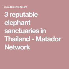 3 reputable elephant sanctuaries in Thailand - Matador Network