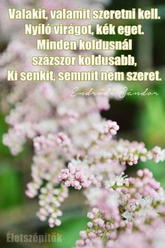 Valakit... Motto Quotes, Motivational Quotes, Life Quotes, Facebook Brand, English Quotes, Quotations, Spirit, Thoughts, Sayings