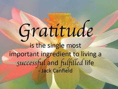 Gratitude and acknowledgment are essential components in creating and attracting what you want in your life. Through the expression of gratitude on a daily basis, you align yourself to receive all the good the universe has to offer. By simply focusing you Gratitude Quotes, Attitude Of Gratitude, Gratitude Jar, Practice Gratitude, Positive Thoughts, Positive Quotes, Grateful Heart, Blessed Quotes Thankful, Frases