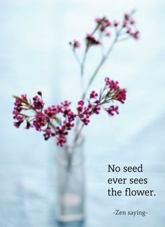 No seed ever sees the flower. ~ Zen saying