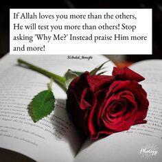 Allah Quotes, Muslim Quotes, Quran Quotes, Religious Quotes, Qoutes, Encouragement Quotes, Faith Quotes, Allah Loves You, Islamic Teachings