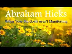 Abraham Hicks ☆ When Your Big Goals Aren't Manifesting