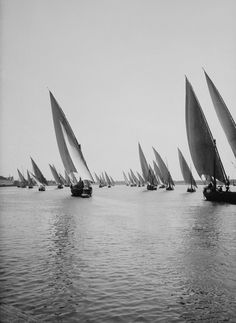 Unknown Photographer, Fleet of boats on Nile River