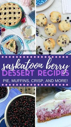 Looking for saskatoon berry recipes? I've rounded up all my favourite pie, cake, muffin, cheesecake, and crisp recipes. They're all delicious summer dessert recipes and can be substituted with blueberries in a pinch. Easy Summer Desserts, Summer Dessert Recipes, Fruit Recipes, Real Food Recipes, Delicious Desserts, Snack Recipes, Summer Fruit, Muffin Recipes, Pie Recipes