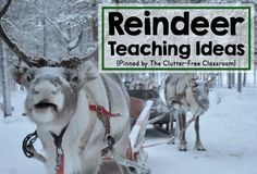 Are you teaching about reindeer in your classroom or homeschool? This resource has ideas, crafts, activities, and lessons for your reindeer thematic unit. The book lists, bulletin board photos, pictures of kid projects and printables are great for kindergarten, first grade, second grade, third grade, fourth grade and fifth grade. Planning a reindeer theme will be easy. Reindeer Facts, Reindeer Craft, Reindeer Bulletin Boards, Kindergarten Crafts, Preschool Themes, Kindergarten Classroom, Preschool Christmas, Christmas Activities, Holiday Activities