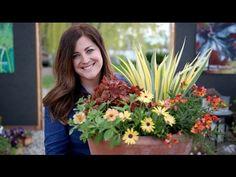 6 Container Inspiration Orange Yellow Garden Answer