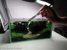 Nano Aquascape