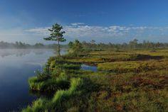 https://flic.kr/p/8h8XaY | Morning at Kakerdi lake, Estonia