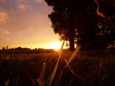 Sonnen Fotografie