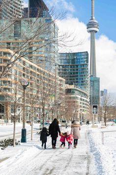 Toronto Views's albums Toronto Snow, Toronto Winter, Toronto Ontario Canada, Toronto City, Downtown Toronto, Travel Around The World, Around The Worlds, Canada Snow, Winter Walk
