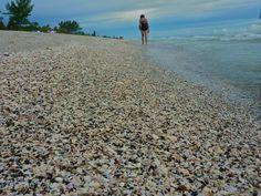 Blind Pass Beach Englewood Florida