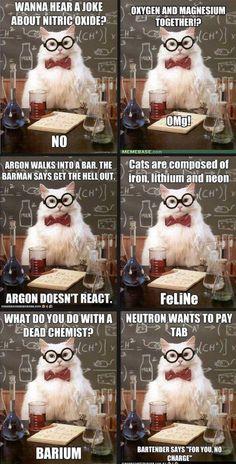 More chemistry cat.