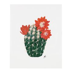 """Part IV of a six part flowering cacti series.An art print of an original illustration by Patricia Shen. 8"""" x 10"""" Printed full coloronheavyweight cover pape"""
