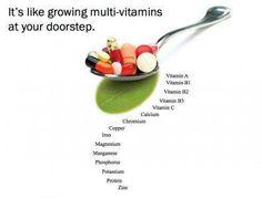 100% absorbable nutrition. www.davecarter.myzija.com