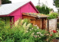 Garage roof!  The Quintessential Portland Gardener | Gardening | Portland Monthly