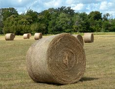 Hay list: wrap it right and store it right