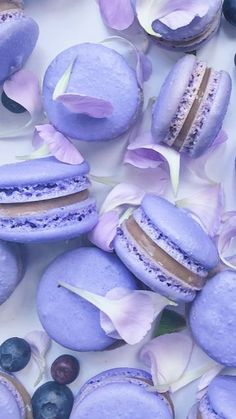 It& been a while since everyone has been wondering: What& Macaron cake expensive .- Điều ai cũng thắc mắc bao lâu nay: bánh Macaron có gì mà đắt như thế? What everyone has been wondering for so long: is Macaron cake so expensive? Macarons, Macaron Cake, Macaroon Cookies, Purple Aesthetic, Aesthetic Food, Cute Desserts, Dessert Recipes, Purple Desserts, French Macaroons