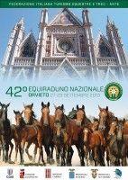 A Orvieto l'Equiraduno Nazionale 2013
