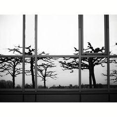 #reflection #downbytheriver #fadedcreativity #pictures #pics #photo #photodocumentation #documentation #reportage #SB #Saarbrücken #Saarland #Saar #saarbrooklyn #street #streetlife #walkby #photowalk #dailylife #everyday #SPi_Travel #bnw_planet #fuji #fujifilm #xt2 #fujifilmxt2 #mood #citylife #trees