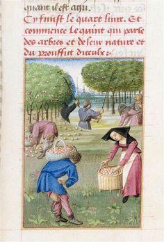 """Le Rustican ou """"Livre des proffitz champestres et ruraulx"""" par Pietro de' Crescenzi  Maître du Boccace de Genève (15e siècle)"""