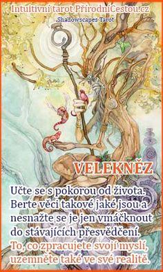 pc-veleknez Reiki, Tarot, Tarot Cards