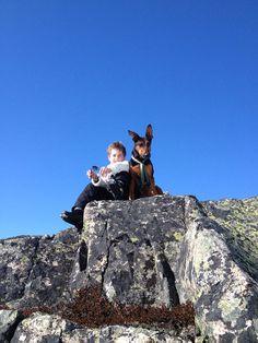 Gutt med Hund på Gaustablikk Norway, Mount Everest, Travel, City, Asylum, Viajes, Traveling, Tourism, Outdoor Travel