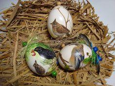Hallo ihr Lieben,...  ...sind bei euch auch schon die Frühlingsgefühle unterwegs? Also ich für meinen Teil habe heute meine persönliche Gart... Egg Decorating, Eggs, Cards, Egg, Egg As Food
