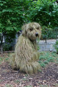 Botanical Gardens Atlanta botanical gardens shaggy dog topiary - had to look twice as I thought this was a real dog!Atlanta botanical gardens shaggy dog topiary - had to look twice as I thought this was a real dog! Topiary Garden, Garden Art, Garden Plants, Garden Design, Dog Garden, Boxwood Garden, Garden Whimsy, Garden Junk, Glass Garden