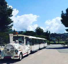 • Festive Season Days •  Enjoy excursion by eco-train around @portocarras!  Daily: 10:00 - 14:00  (Free of charge,kindly find attached daily timetable on the announcement desk)  #portocarras #xmas #train #holiday #halkidiki #festive #sithonia #explore #trip