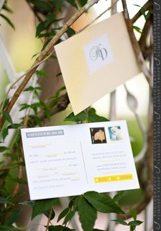 @Erin B Meyer-Cuno this is what the front of their wedding invite looked like just to give you more of a visual these are the RSVP cards inside the invitation