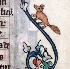 Marginal fox, breviary, France 13th century (Cambrai, Bibliothèque municipale, ms. 102, fol. 13v)