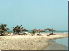palm-beach-6.jpg (549×413)
