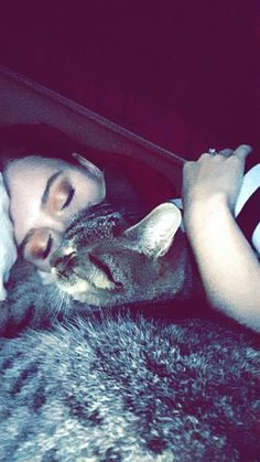 #cat #bed #makeup