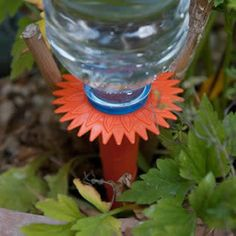 This is an innovative idea for watering plants when on your absence from home. It is also good to save water.  http://www.caraselledirect.com/_/pack_of_6_watering_spikes_the_ultimate_plant_watering_solution.2241-1