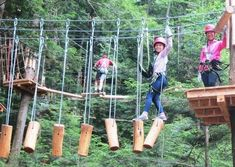 Looking for a different type of summer fun? More people are learning the ropes at aerial adventure parks — destinations featuring zip lines, high wires, ropes