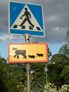 Traffic sign in Uppsala, Sweden. No wonder I liked it so much there.