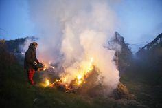 Den Pflanzen zuliebe: Mit Rauchschwaden, Kerzen und Vlies gehen Obstbauern in vielen Teilen des Landes gegen die frostigen Temperaturen vor. Mehr Bilder des Tages auf: http://www.nachrichten.at/nachrichten/bilder_des_tages/ (Bild: APA)