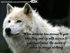When someone has access to your ears they end up with access to your heart and mind.  Be aware of wolves in sheep's clothing in friendships, etc.  #important