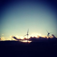 Wind turbines 27/366...my daughter loves these