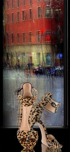 leopard printed sandals from Gianvito Rossi §
