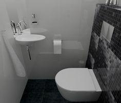 WC ontwerp met glanzende wandtegels die voor een spiegeleffect zorgen. Sani-bouw.nl voor uw toilet ontwerpen