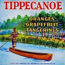 Orlando Florida Tippecanoe Orange Citrus Fruit Crate Label Print