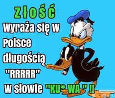 Beka z Człowieka - Strona 5 z 96 - Funny Memes, Hilarious, Equestrian Style, Haha, Disney Characters, Fictional Characters, Cute, Pictures, Poland