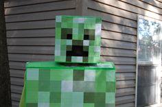 Minecraft Creeper Costume Outdoors