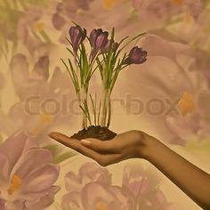 """""""døden strakte sin lange hånd hen imod den lille fine blomst, men hun holdt sine hænder fast om den, så tæt, og dog bange for at hun skulle røre ved et af bladene"""""""