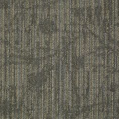 Reveal Tile - Philadelphia Commercial Carpet Tile - Shaw - Carpet Tile - Embrace Courage