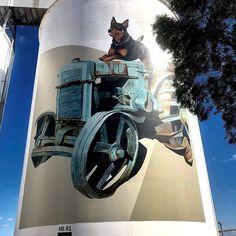 Silo art in Pingrup Western Australia. Check out the kelpie on the tractor!  . #siloart #mural #muralart #artwork #silomural #silomuralart #grainsilo #siloartrail #kelpie #kelpiecountry #kelpiekuntry #australiankelpie #kelpiegram #kelpieworld #instakelpie #wa #westernaustralia #awesome #epic #megaart #artist #adogslife #workingdogs #workingkelpie #farmdog #farmlife #rurallife #countrylife 3d Street Art, Amazing Street Art, Amazing Art, Farm Art, Australian Art, Water Tower, Country Art, Mural Art, Western Australia